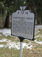 VA-R59 Constituion Forest